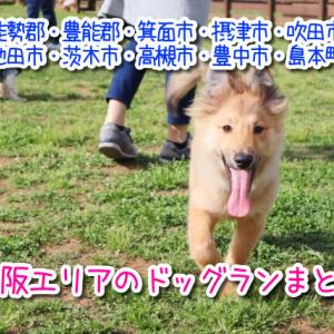 北大阪エリア(箕面・茨木・吹田・高槻など)にあるドッグランをまとめました!