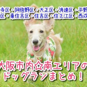 大阪市内の南エリア(天王寺区・住之江区・住吉区・阿倍野方面)にある人気ドッグランをまとめて紹介します♪