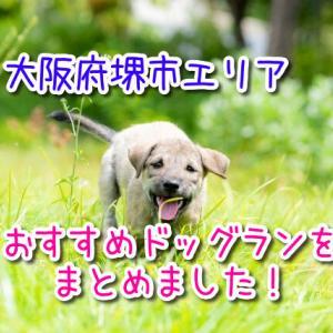 大阪府堺市エリアのおすすめドッグランまとめ!愛犬と走って遊んでストレス解消!