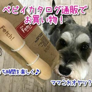 【ペピイ通販】8000点の品揃え!人気の犬用おもちゃを注文してみた!ワンちゃんのおうち時間のストレス解消に♪