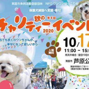 第4回!芦原公園で保護犬の応援・支援を目的とした秋のチャリティーイベント開催!NPOワンワンほっこり会主催☆