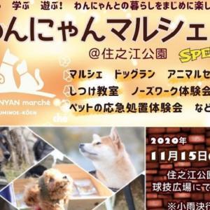 わんにゃんマルシェ@住之江公園Special!買う!学ぶ!遊ぶ!がそろったペットイベント!ワンちゃんと参加OK!