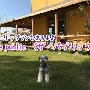 【the public (ザ・パブリック)】和歌山市ワンちゃんOKのカフェ!テラス席と店内一部同伴可!ミニドッグランもあり!