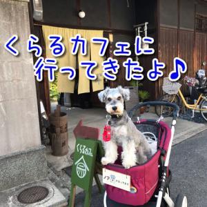 【くらるカフェ】古民家をリノベしたオーガニックフード中心のお店!テラス席と一部店内(個室)ワンちゃんOK!