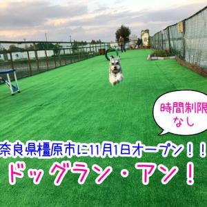 【ドッグランアン】奈良県橿原市にNEWオープン!駐車場無料!大型犬歓迎!時間制限なしで利用オッケー!(※出入り自由)