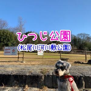 【大阪府和泉市】ワンちゃんと一緒にお散歩OK♪久保惣記念美術館横にひつじがいる公園(松尾川河川敷)があるよ♪