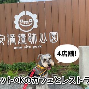 【安満遺跡公園(あまいせきこうえん)】ペット同伴OKのカフェ&レストラン4選!テラス席でワンちゃんと一緒に過ごせます♪