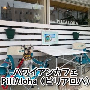 【ピリアロハ】でテイクアウト!大阪府堺市のハワイアンカフェ!テラス席ワンちゃんOK!無料駐車場あり!