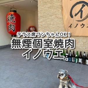 【無煙個室焼肉イノウエ】堺市の予約必須な人気店!テラス席ワンちゃん同伴OK!専用駐車場15台あり!