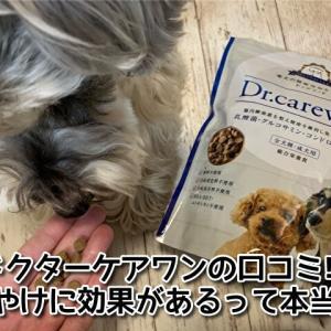 【ドクターケアワンの口コミ評価】涙やけに効果あるフードって本当?愛犬に3か月与えてみた変化をレビュー!