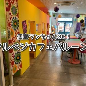 【フルベジカフェバルーン】カラフルで可愛い個室☆ランチタイムワンちゃん同伴OK♪沖縄アイスブルーシールが美味しい♡
