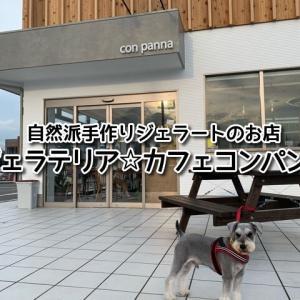 【ジェラテリア&カフェコンパンナ】和歌山市!テラス席ワンコOK!手作り濃厚ジェラートが最高に美味しい♪