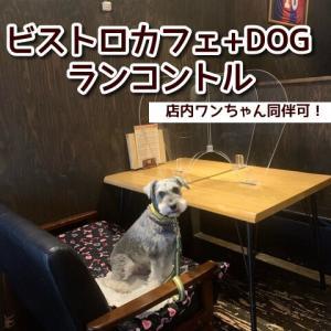 【ランコントル】大阪府堺市のビストロカフェ☆ペット店内同伴可!鶏料理やランチなどメニューが豊富!テイクアウトもあり!