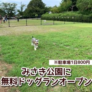 みさき公園に無料ドッグランオープン!中大型犬・小型犬エリア分けあり!※駐車場料金800円が必要(1日)!