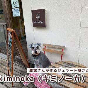 【キミノーカ】和歌山紀美野町にある農家が作るジェラート屋さん★テラス席ペットOK!駐車場無料!テイクアウトや通販もあり♪