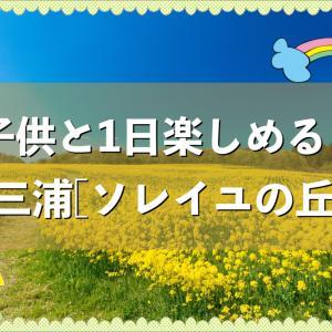 【神奈川】ソレイユの丘で子供と一日遊ぼう♪ゴーカートもあるよ!