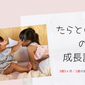 3歳5ヶ月/1歳の娘たちの成長記録