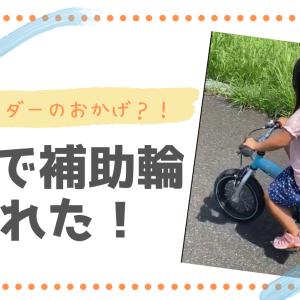 3歳半で補助輪が取れた!ストライダーのおかげ?バランスバイクの必要性!