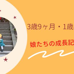 3歳9ヶ月/1歳4ヶ月の娘たちの成長記録