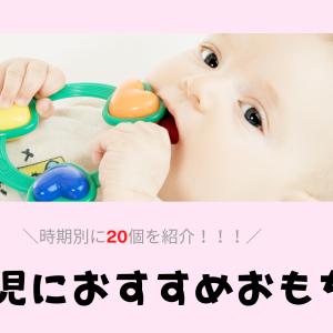 【月齢別】2児のママが本気で選ぶ!0歳児におすすめのおもちゃ