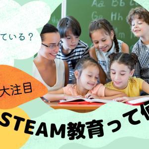 【STEAM教育】日本での認知度20%だけど海外で大注目されています。