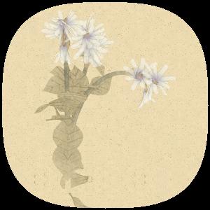 世界中どこにも存在しない花を生成するサービスNonflowers