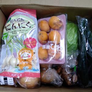 到着!ふるさと納税で野菜セット(松浦市)