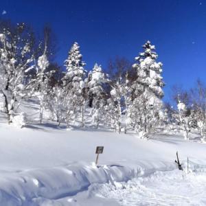 2021年1月子連れでスキー(1)安比ヒルズ白樺の森