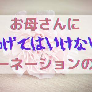 【母の日】カーネーションの色よくない5つ!花言葉がNGだよ!