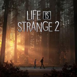 PS4『Life is Strange 2』トロコン後レビュー|前作とはかなり毛色が違う