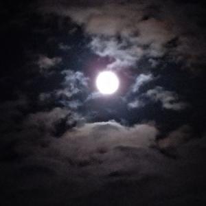 安物カメラで撮る仲秋の名月
