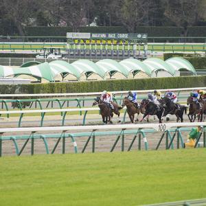 白鷺賞2020予想┃姫路競馬2000m戦はデータが無いので枠順と騎手と馬柱を重視