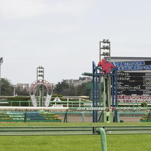 東京新聞杯2020予想┃過去10年データより8歳馬以上は消し