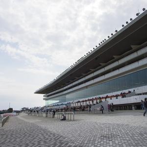 佐賀記念2020予想┃過去10年データよりハーツクライ産駒の実力馬は狙い目!
