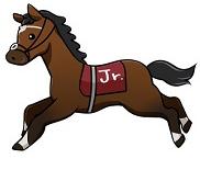 ジューンダッシュ・夏至特別・海風賞2020予想┃トリプル馬単対象3レースの本命馬発表