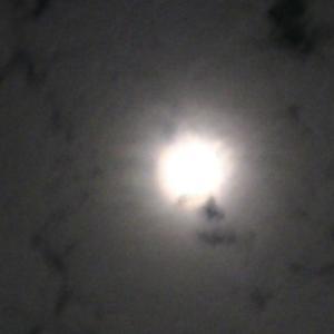 中秋の名月だって🌕❕ ひそキャン⛺を やらねぇわけにはいかねえだろうΣ(゚Д゚)