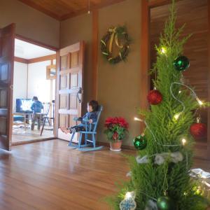 【田舎ライフパパTaku通信】サイト3ヶ月目で28万円 × 〇〇でドキドキのクリスマス