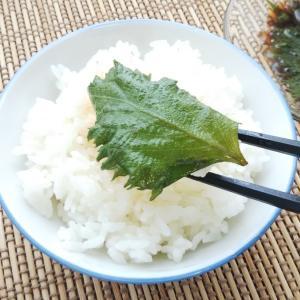 【しそレシピ🍃】しそのゴマ油醤油漬け(^^♪ご飯がすすむ~!簡単レシピ