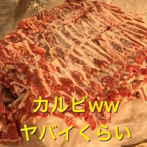 牛肉ゲット!生肉を食べさせよう!本能満たせ!