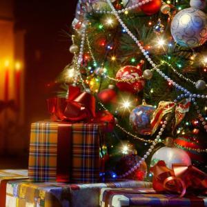 """なぜ、クララちゃん(小5)のクリスマスプレゼントが""""きのこリウム""""に変わったのか?【中学受験2021年組】"""