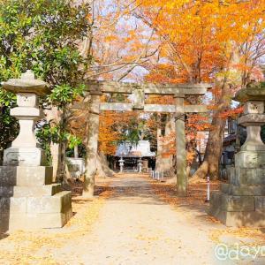 春馬くんが参拝していたという、土浦総鎮守 八坂神社へ…⛩