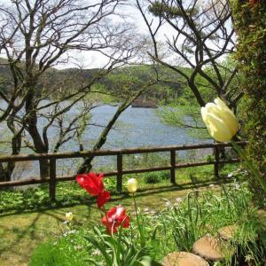 恩賜箱根公園 高台の庭園から芦ノ湖と箱根外輪山と富士山を望む