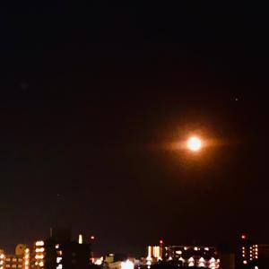 十六夜の月 オクトーバー・サプライズ