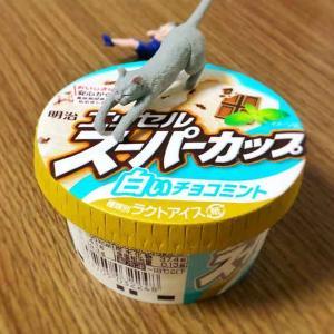 【アイス同好会】スーパーカップ白いチョコミント美味すぎてフチ子落とした