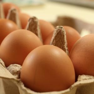 「卵」最良質タンパク質で健康的に痩せる!