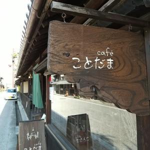 岡寺と談山神社へ ことだまさんでランチ 大満足です