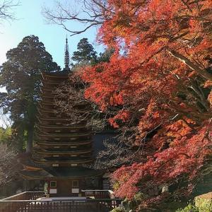 岡寺と談山神社へ③ 来年はもっと早くに来よう・・・