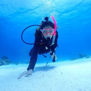 沖縄 憧れのダイビングライセンス 2月・3月がおすすめの理由