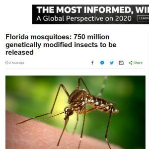 フロリダで蚊を殺すための遺伝子を操作した蚊を解放 【世界観を考える】