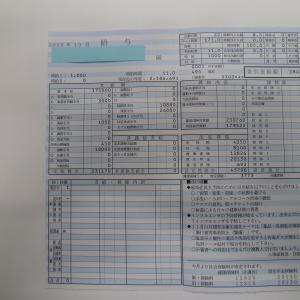 【月報】2020年10月度(10/1~10/31)【全財産1,469,000円】